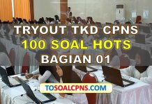 Tryout-CPNS-2019-HOTS