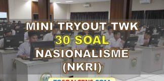 Mini Tryout TWK Latihan Soal CPNS NKRI